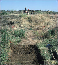 Initial excavations for 16 m test trench in Area 2, facing north. (SL-YJ-JMT-005)