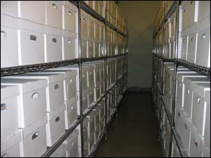 Image of collections after
